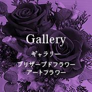 Gallery プリザーブドフラワー・アートフラワー